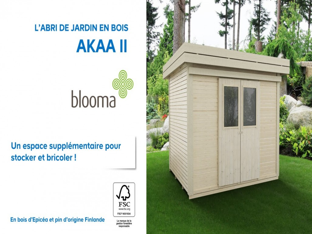 abris de jardin toit plat blooma abri de jardin et balancoire id e. Black Bedroom Furniture Sets. Home Design Ideas