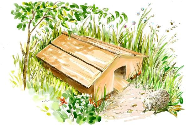 Cabane hérisson jardin