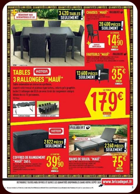 ensemble salon de jardin brico depot abri de jardin et. Black Bedroom Furniture Sets. Home Design Ideas